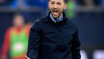 Für Schalkes Trainer Domenico Tedesco ist es zum Verzweifeln