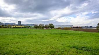 Die Ebene, wo Salina Raurica geplant ist, wird derzeit landwirtschaftlich genutzt. Manche möchten, dass sie grün bleibt. (Archivbild: Pratteln, 27. Oktober 2017)