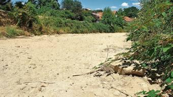 Dass Bäche, wie hier die Sissle, austrocknen, wird mit der Klimaerwärmung wohl zunehmen.