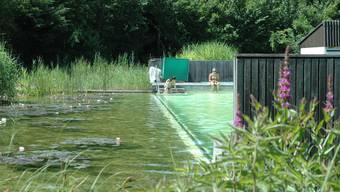 Zuviele Keime: Bei grossem Besucheranstrum ist das Biobad in Biberstein von ungenügender Wasserqualität.