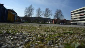 Gleich links neben dem roten Gebäude soll das neue Alterszentrum in Schlieren erstellt werden, wenn das Parlament die CVP-Motion nicht überweist.
