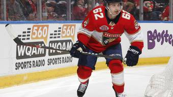 Neuer NHL-Vertrag für die kommende Saison: Denis Malgin bleibt den Florida Panthers treu