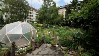 Der Gemeinschaftsgarten Landhof soll mitten in Basel zeigen, «dass man in der Stadt mehr machen kann».