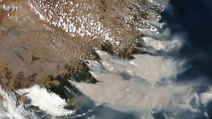 Satellitenaufnahme der verheerenden Buschbrände im australischen Bundesstaat New South Wales. Zügelloses Roden hat laut einer Studie beträchtlich zu den Bränden beigetragen. (Archivbild)