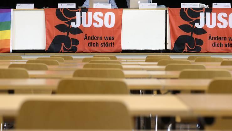 JUSO-Präsident Fabian Molina (l.) und Zentralsekretär Dario Schai wollen bei den kommenden Wahlen für eine starke Linke kämpfen (Archivbild)