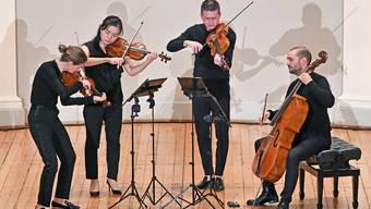 Das Galatea Quartett machte den Auftakt zur «KulturTupfer-Serie» im Stadttheater.