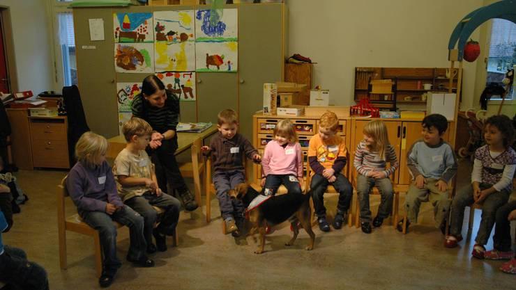 Der Gemeinderat Welschenrohr gab grünes Licht für den Hund im Kindergarten (Themenbild).