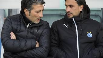 Murat und Hakan Yakin stehen die nächsten Spiele für GC nicht an der Seitenlinie