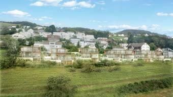 Im Wilifeld waren drei Einfamilien- und zwei Dreifamilienhäuser geplant.