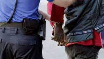 Im Zürcher Hauptbahnhof sind in der Silvesternacht nach Tätlichkeiten elf Männer festgenommen worden. Sie werden wegen Raufhandels, Hinderung einer Amtshandlung oder Tätlichkeiten angezeigt. (Symbolbild)