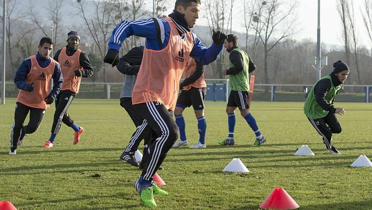 Davide Calla will sich weiter für einen Stammplatz aufdrängen.