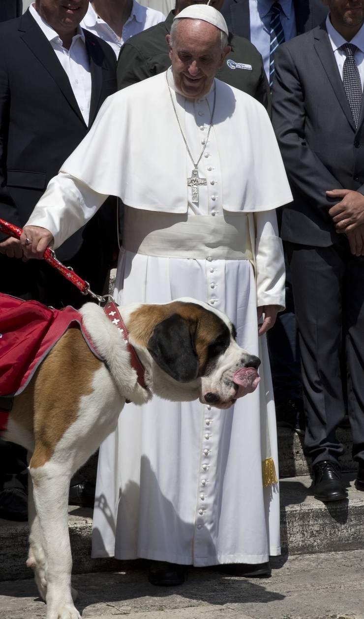 Papst Franziksu mit dem Nachfahren von Barry.