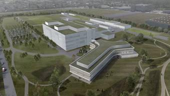 Der geplante Bau von Biogen in Luterbach.