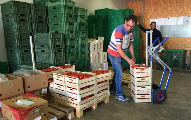 Maurizio Siragusa, Geschäftsführer Siragusa GmbH, beim Umladen von Tomatenkisten in seinem Lager.