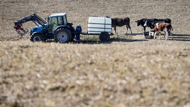 Mehr als nur Lebensmittel-Erzeuger die Landwirtschaft. (Archiv)