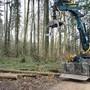 Ein Arbeiter wurde im Wald bei Rickenbach verletzt. (Symbolbild)