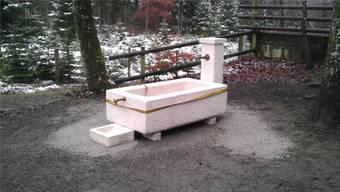 Noch fliesst kein Wasser im neuen Brunnen bei der Gebenstorfer Waldhütte «Im Steig» Foto ZVG