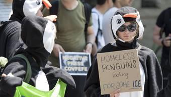Protest in Bern gegen US-Rückzug vom Pariser Klimaabkommen