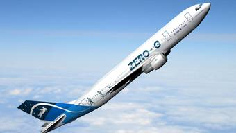 Flüge in die Schwerelosigkeit: Dank dem Projekt «Microgravity» soll dies bald für die breite Öffentlichkeit möglich sein.