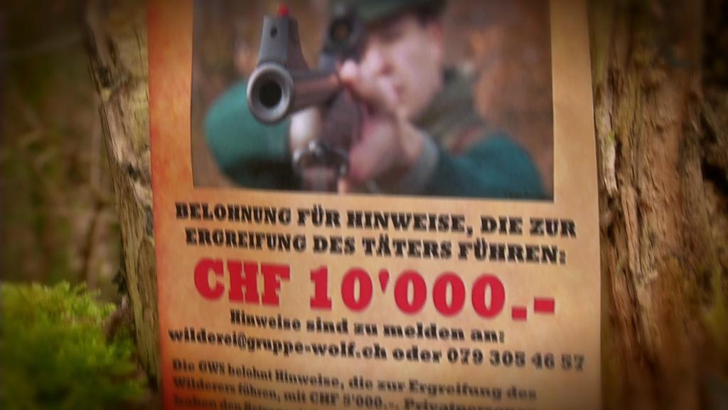Kopfgeld-Jäger