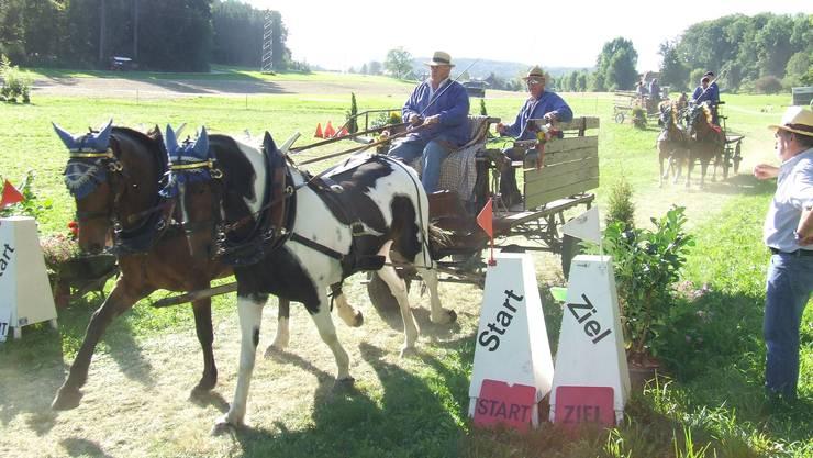 Auf der Ehrenrunde: Die Teilnehmer vom Bockwagen-Rennen, der spektakulären «Königsdisziplin». (Bilder Thomas Stöckli)