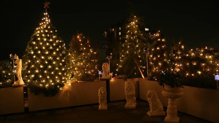 auch ohne Schnee ist Weihnachten eine grosse Freude