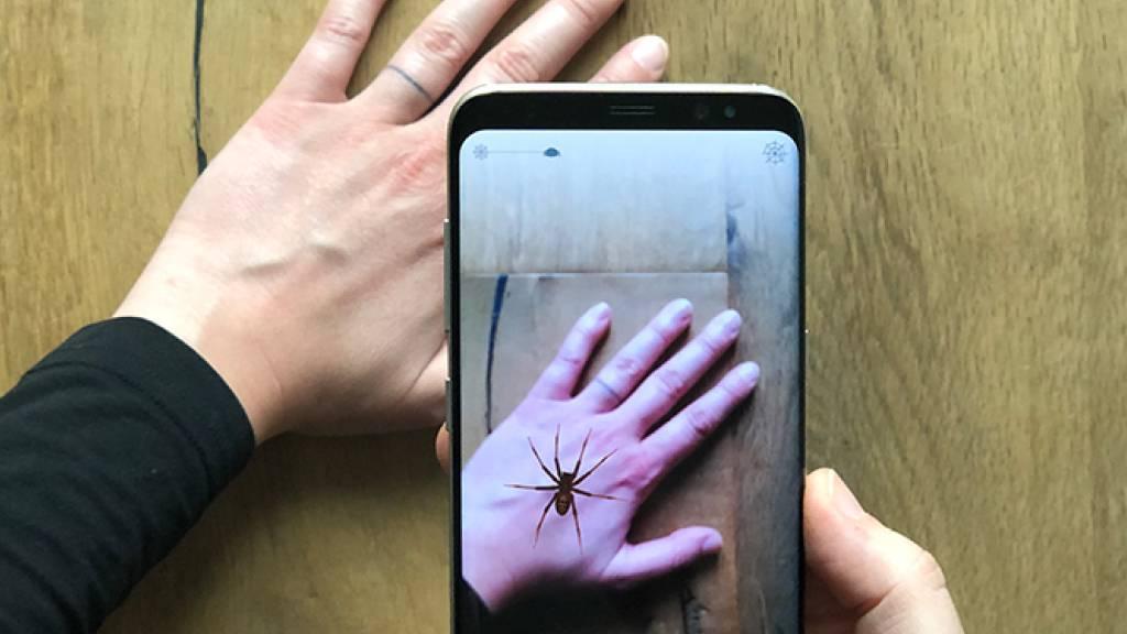 Eine Augmented-Reality-App nimmt den Spinnen ihren Schrecken