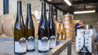 Bonvinvant: Pinot Noir aus dem Wallis