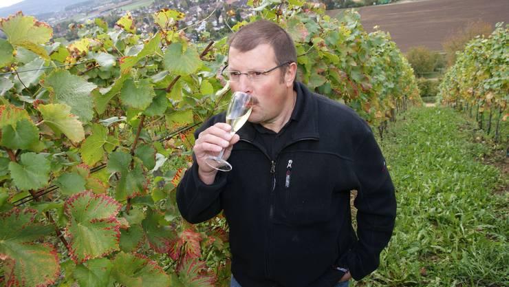 Gehaltvoll: Raymond Sommer, Präsident des Baselbieter Weinproduzentenverbands, geniesst die Weinernte. Sie ist bereits zu 70 Prozent eingefahren. (Andreas Maurer)