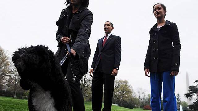 Bo hat seine Familie im Griff (Archivbild)