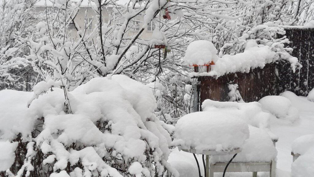 Die Aussenstation von Meteonews in Heiligkreuz im Sarganserland auf knapp 500 Metern meldete am Donnerstagnachmittag schon über 40 Zentimeter Schnee. Und bis Freitagvormittag «schneit es hier durch, weit über ein halber Meter Neuschnee liegt drin», hiess es.