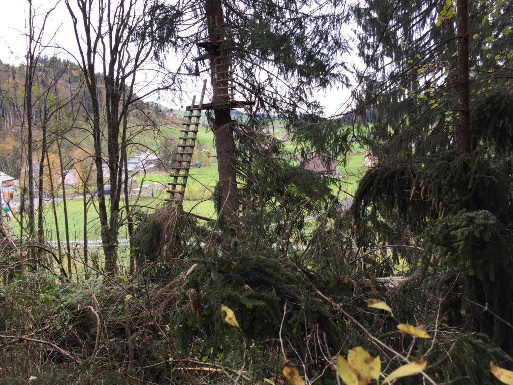 Zerstörter Seilpark am Kronberg