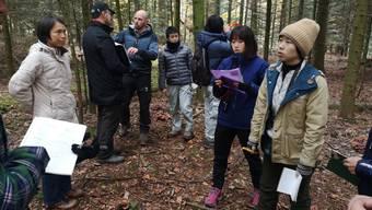 Martin Blattner (M.) gestern mit den japanischen Forstexperten.