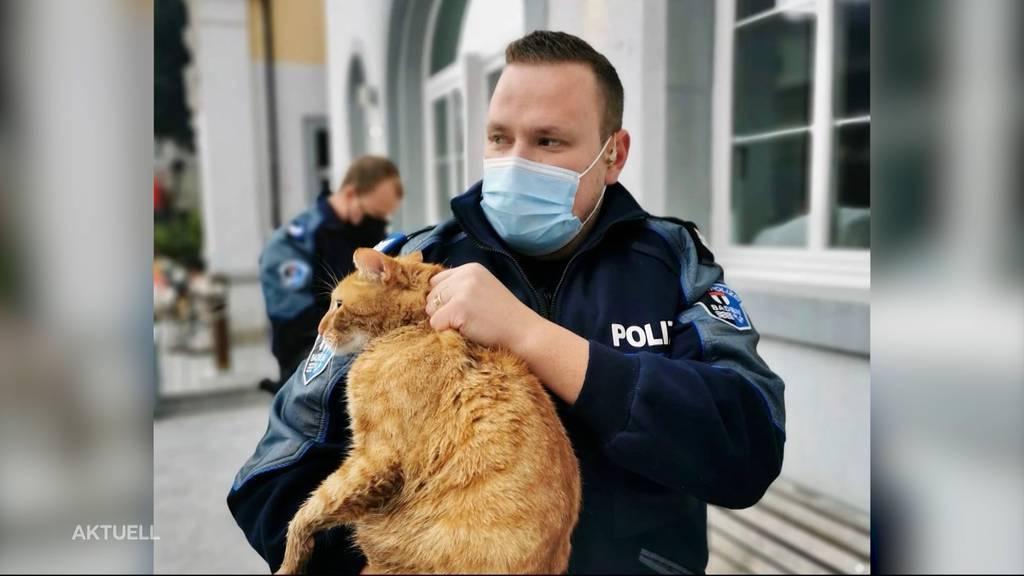 Stadtpolizei Baden und Kajakfahrer retten eine Katze