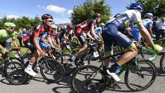 Ein Rennen auf höchstem Niveau: Die Radsporrtage Gippingen gehören zu den Top Sport-Events im Aargau. (Archiv)