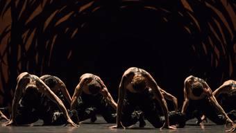 Die Choreografie von Crystal Pite bietet auffallend schöne Bilder.