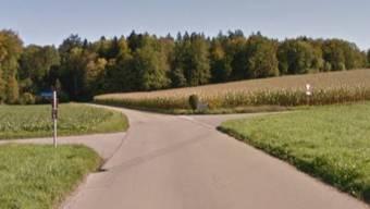 An dieser Kreuzung fuhr der Junglenker geradeaus ins Feld statt abzubiegen.