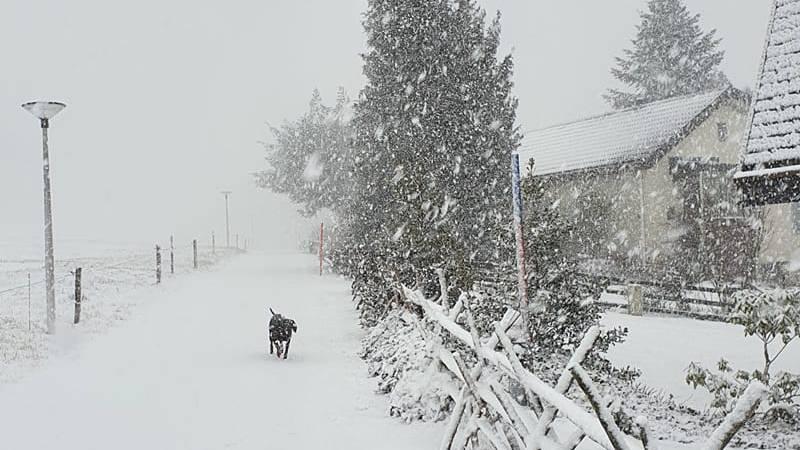 So schön sind die Schneebilder der FM1-Community