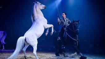 Das Textilmuseum St. Gallen zeigt in einer Ausstellung rund 90 Kostüme des National-Circus Knie. Das Bild zeigt Ivan Frédéric Knie bei einer Pferdenummer.