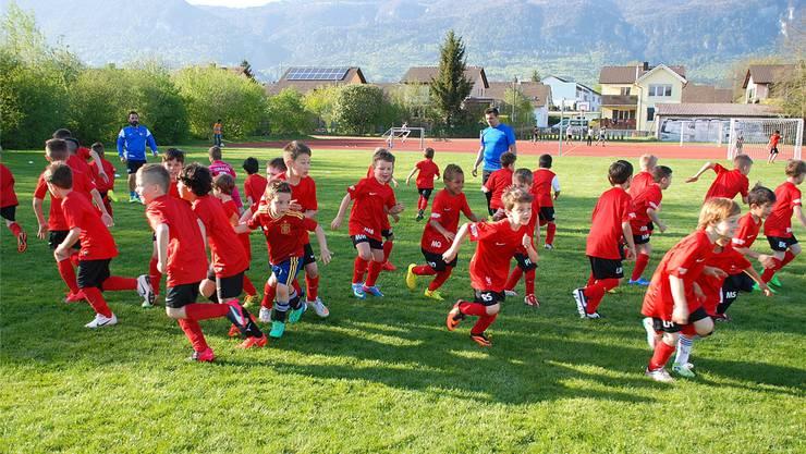 Wo ist der Ball? Bereits bei den heutigen F- und G-Junioren gibt es marginal polysportive Übungseinheiten.