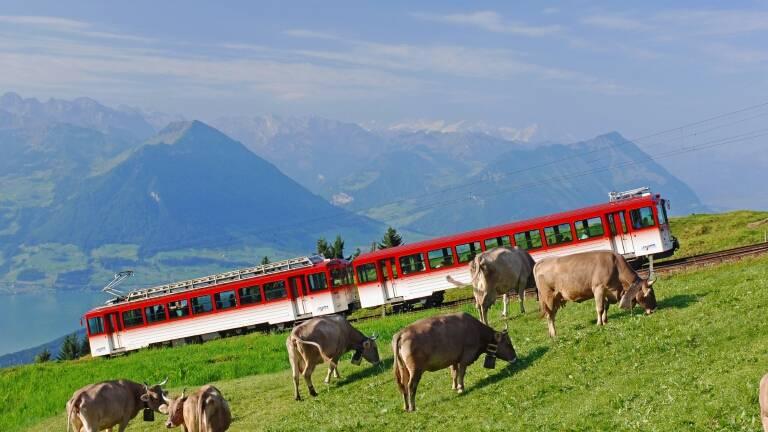 Freizeittipp: Unterwegs mit dem Sommertellpass