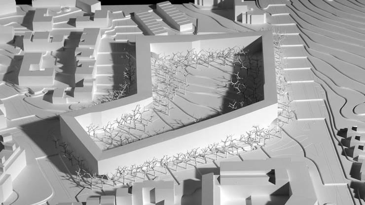 """Das Wohnbauprojekt """"Ringling"""" sei nicht besonders gut gestaltet, so das Urteil des Bundesgerichts.jpg"""