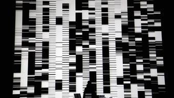 Eine audiovisuelle Performance von Ryoji Ikeda. Die Computer Graphics stammen von Tomonaga Tokuyama. Liz Hingley
