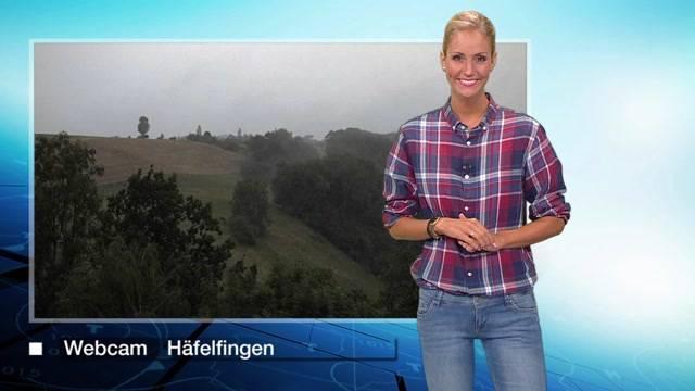 Die Wetterprognosen fürs Mittelland vom Mittwoch, 29. Juli 2015.