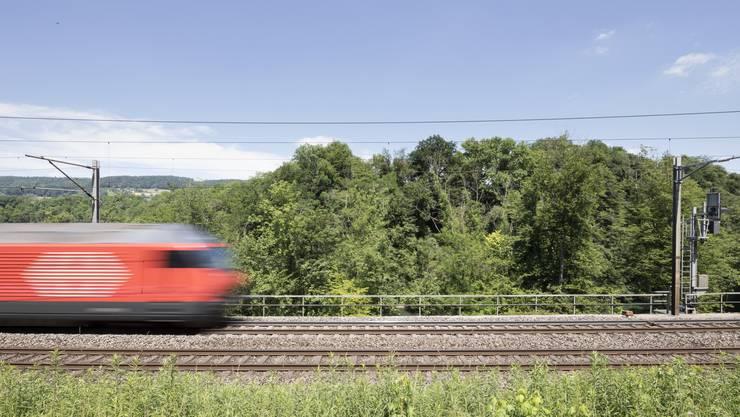 Die Schweizer sind fleissige Bahnfahrer.