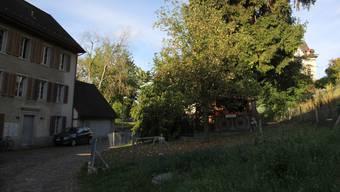 Der Garten in der Brunnenmühle.