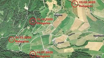 Jagdaufseher Alex Rüfenacht hat die Fundstellen der toten Rehe genau verzeichnet. Vier davon liegen am Thiersteinberg.