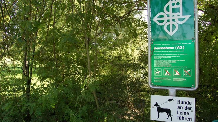 Die Erfolge im Natur- und Landschaftsschutz sollen mit dem Programm «Natur 2020» gesichert werden. Foto: Eds