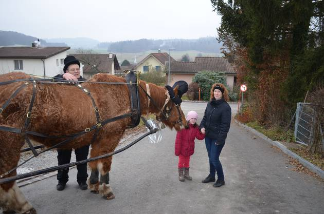 Daniel Tschabold richtet Orlandos Zaumzeug, die Frau begrüsst mit ihrer Tochter das Pferd.