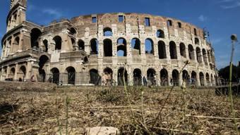Dürre rund ums Colosseum im Zentrum von Rom - die italienische Hauptstadt trocknet aus. Am Montag kam das rettende Nass (Aufnahme vom 31. August).